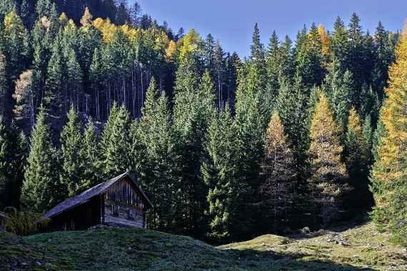 Forstliche Ausbildung